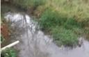 Parlamentar cobra limpeza do Córrego de Tuiutinga